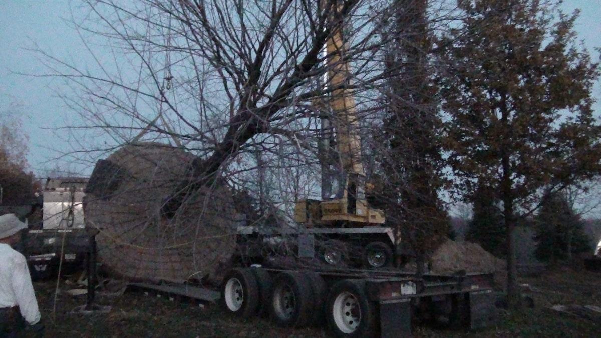 Crane placing tree on flatbed